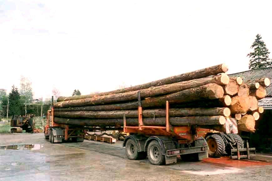 Bille De Bois De Sciage - Grume de sciage et billon bois bruts en résineux